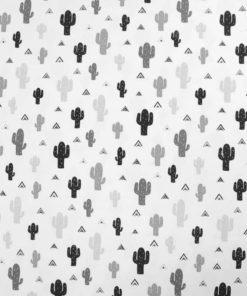 Kapa Cactus 1
